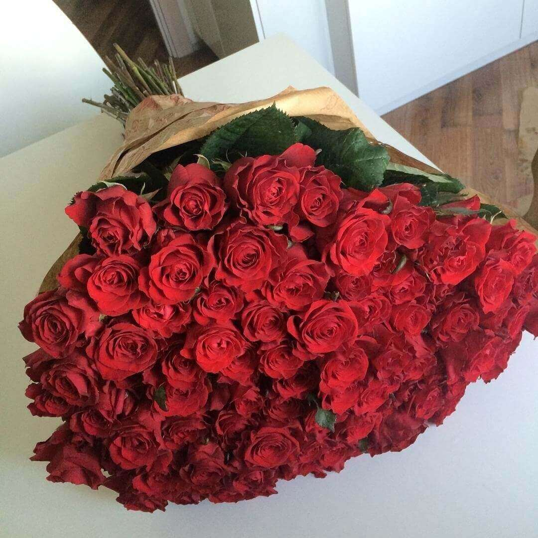 Фото цветы роза огромный букет